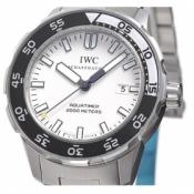 IWCIW356809コピー