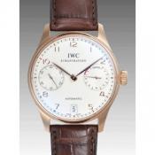 IWCIW500113コピー