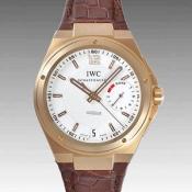 IWCIW500503コピー