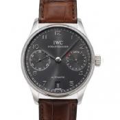 IWCIW500106コピー